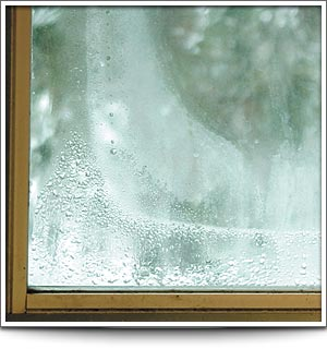 Understanding Window Condensation – How To Resolve It