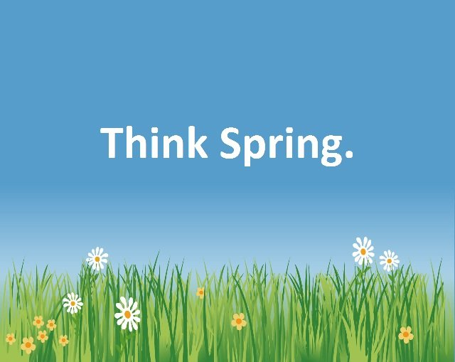 SPRING Your Next Project Into Action